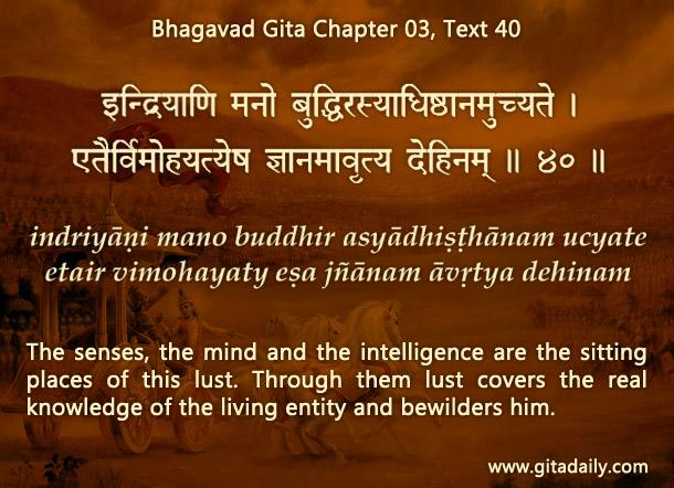 Bhagavad Gita Chapter 03 Text 40
