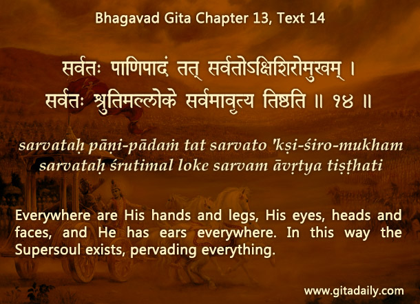 Bhagavad Gita Chapter 13 Text 14