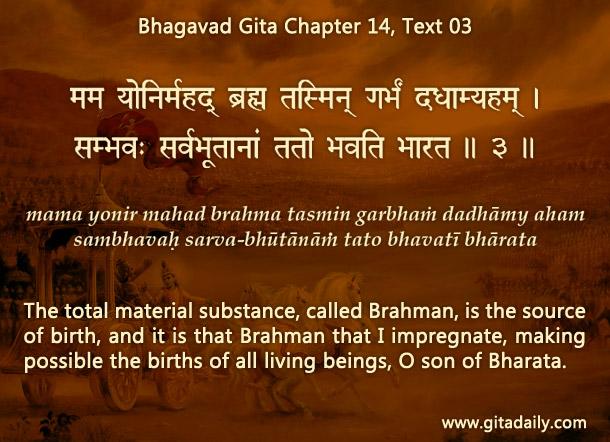Bhagavad Gita Chapter 14 Text 03