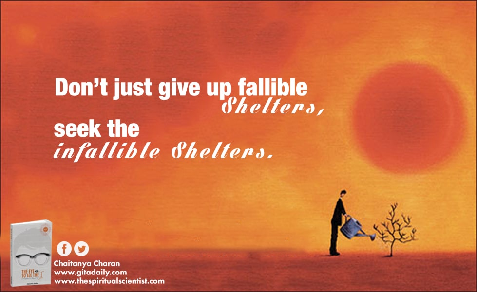 Don't just give up fallible shelters – seek the infallible shelter
