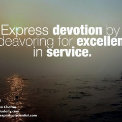 Express devotion by endeavoring for excellence in service